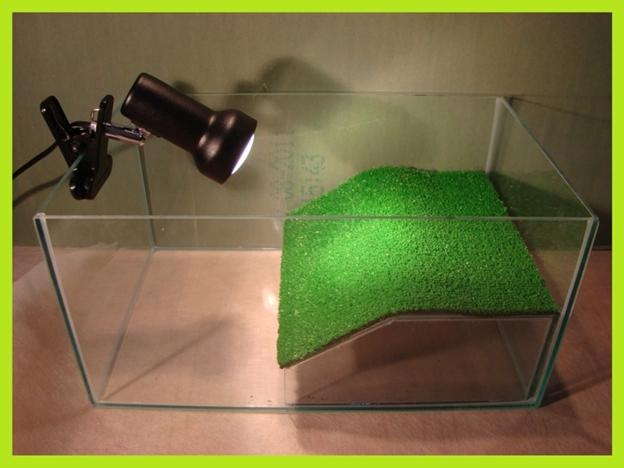 Как сделать аквариум своими руками в домашних для черепахи 64